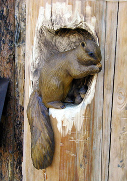 Hollow Log — Tree Carving, Chainsaw carving, and Sculpture ...